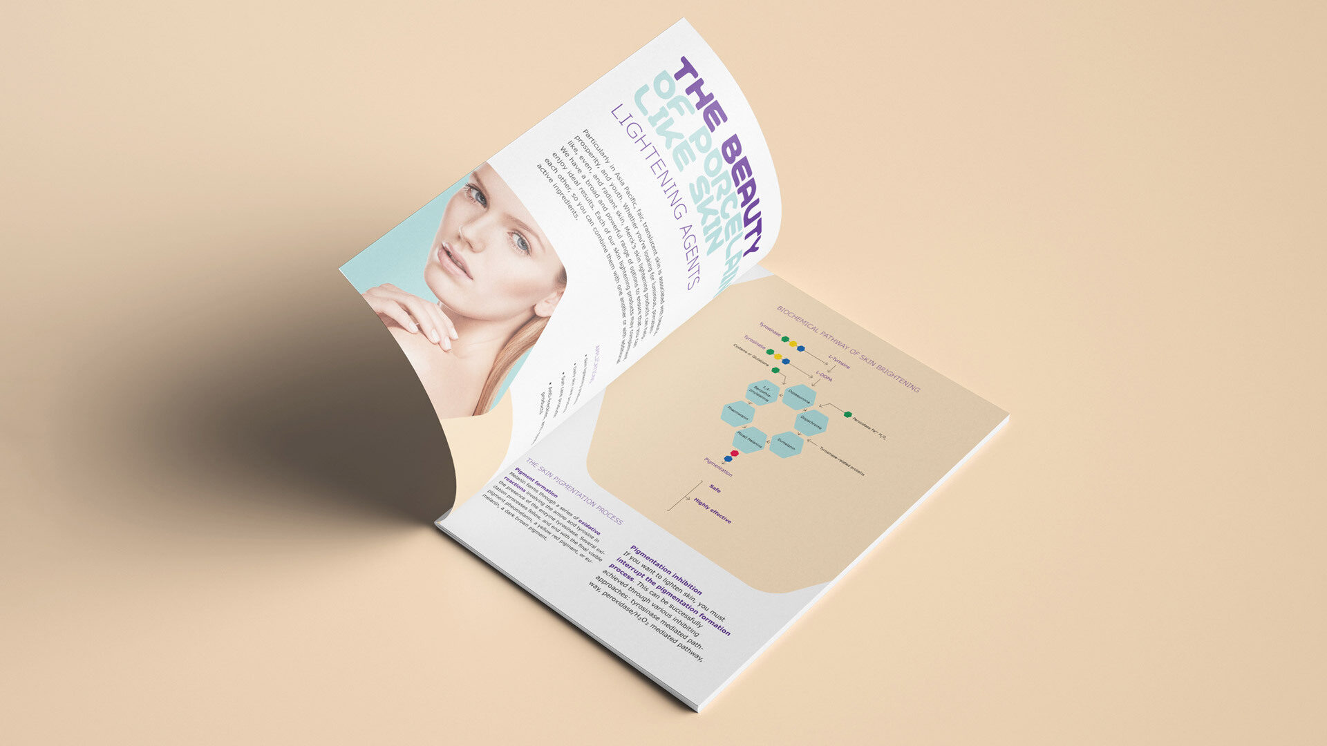Aufgeschlagene Broschüre mit Beautyportait einer Frau und eine Infografik auf beigem Hintergrund