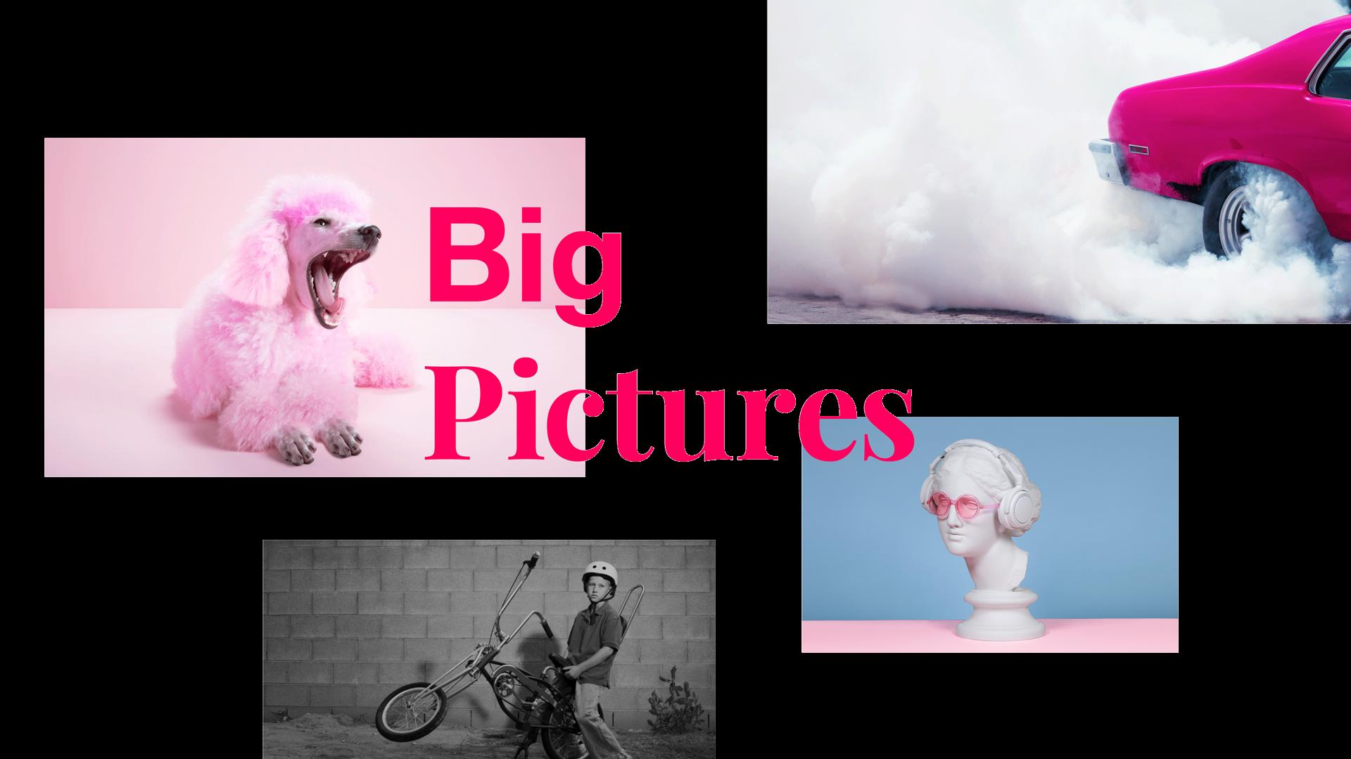 """Headline """"Big Pictures"""" auf Bildern mit einem pinken Hund und einem Auto mit qualmenden Reifen"""